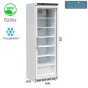Armario de congelación 1 puerta cristal