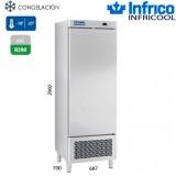 Armario Congelación IAN501 N